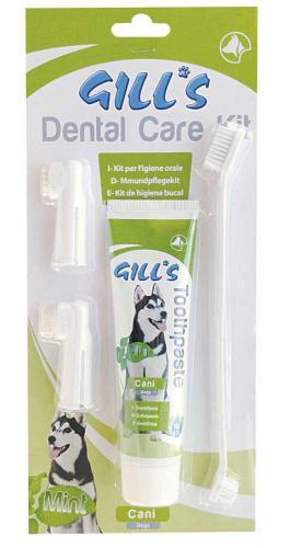 Zubní sada (pasta+kartáèky) Gills