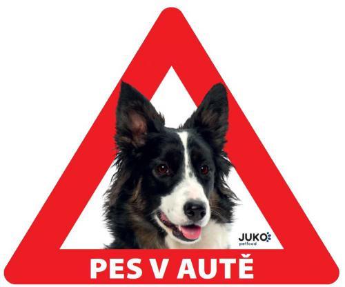 Samolepka pes v autì vnitøní - border kolie