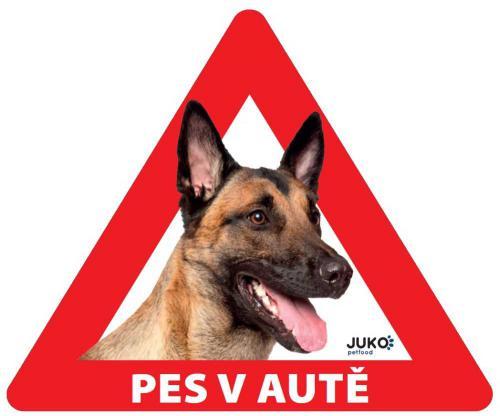 Samolepka pes v autì vnitøní - belgický ovèák, malinois