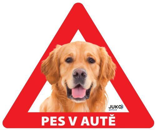 Samolepka pes v autì venkovní - retriever