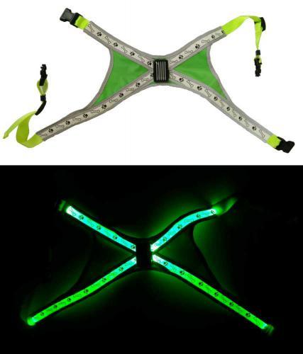 Svítící LED postroje L zelená