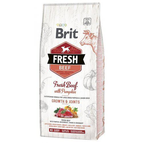 Brit Fresh Beef & Pumpkin Puppy Large 12kg