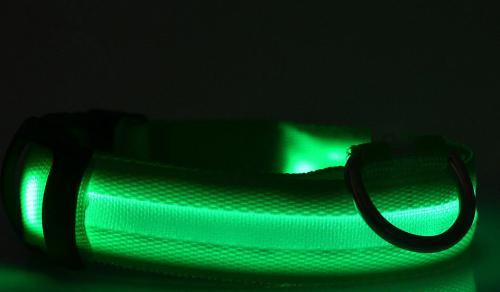 Svítící obojek 2,5 cm x (40-54) cm/4 rùzné barvy