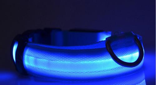 Svítící obojek 2,5 cm x (42-59) cm/4 rùzné barvy