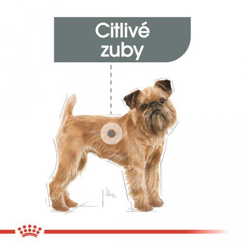 Royal Canin Mini Dental Care bal.1kg/3kg/8kg