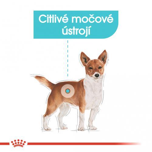 Royal Canin Mini Urinary Care bal.1kg/3kg
