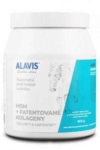 Alavis MSM pro konì plv 600g
