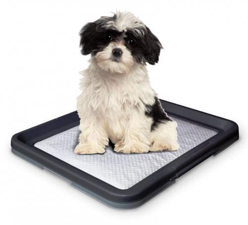 Nobby Doggy Trainer S plastové WC na podložky pro štìòata 48 x 41 x 3,5 cm