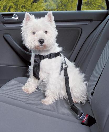 Nobby bezpeènostní postroj S pro psa do auta