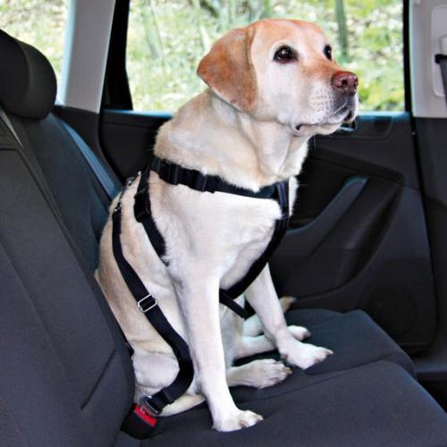 Nobby bezpeènostní postroj M pro psa do auta