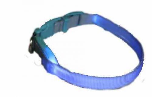 Svítící obojek popruh modrá 15 x 18-28 cm