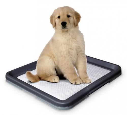 Nobby Doggy Trainer L plastové WC na podložky pro štìòata 62,5 x 48 x 3,8 cm