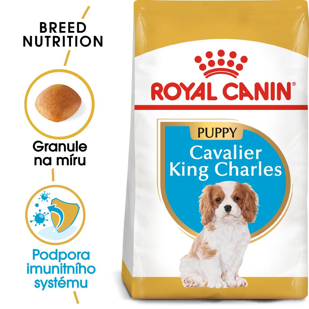 ROYAL CANIN Cavalier King Charles Puppy bal.1,5kg - zvìtšit obrázek