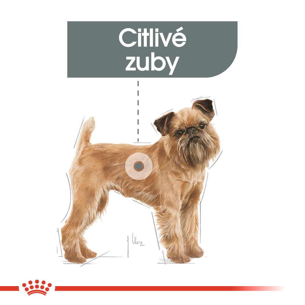 Royal Canin Mini Dental Care bal.1kg/3kg/8kg - zvìtšit obrázek